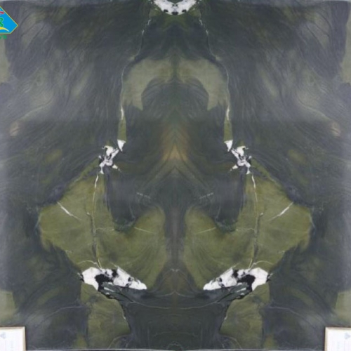 Avocatus ghép tranh